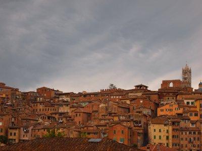 Autumn Siena.