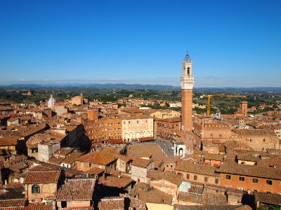 The Siena skyline - main Piazza is in the centre of the photo.