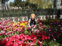 Having a tiptoe through the tulips - Anne in the gardens of Topkapi Palace.