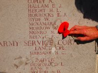 A poppy for an 18 year old Australian Soldier.