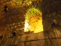 Moisture from the floor above is causing moss on the walls of the cellar of the Diocletian's Palace - Split.