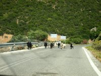 A herd of goats on the road - Crete.