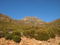 Rugged terrain - photo taken as we drove by - Crete.