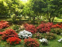 Tranquil gardens surrounding the Villa Carlotta.