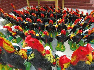 Roosters, Thailand.