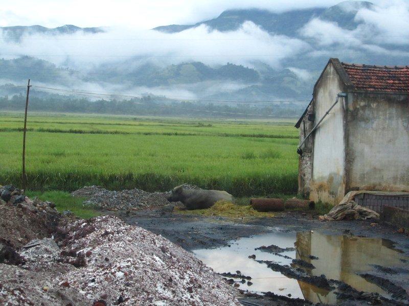 Dien Bien Fu, countryside