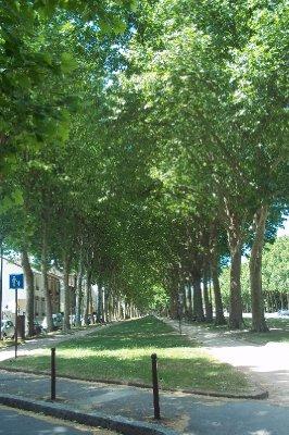 Paris_017.jpg