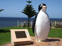 the_big_penguin.jpg