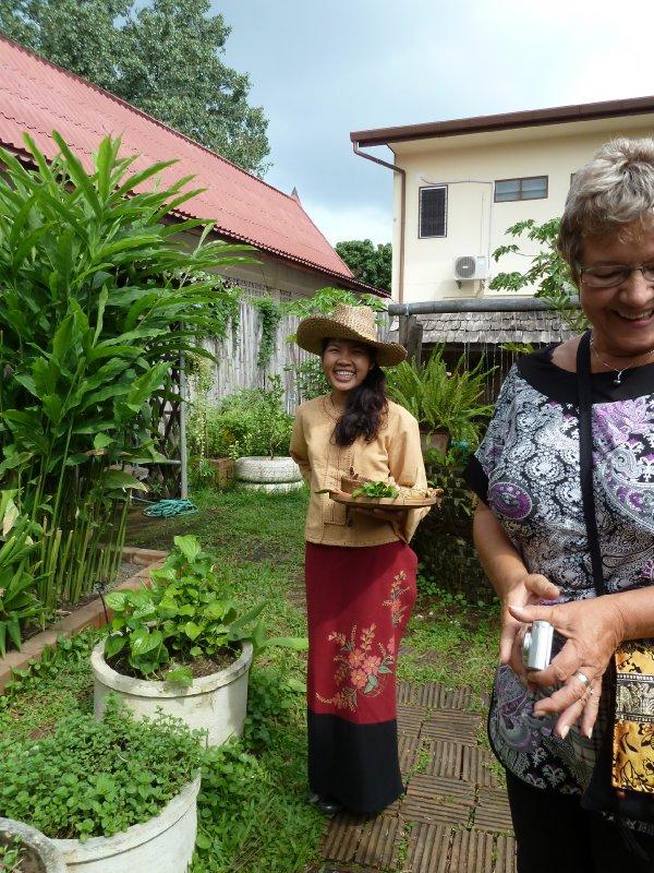 The Organic Herb Garden