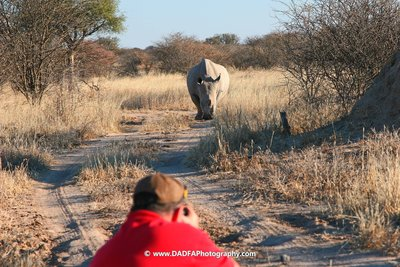 Photographing Rhino on foot!