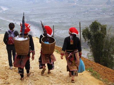 Dao travelling companions