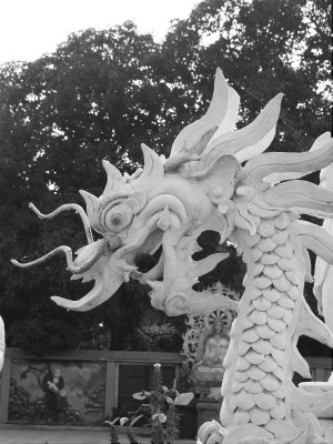 Dragon__Pho_Linh.jpg
