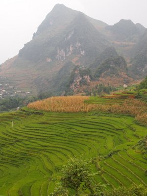 Remote farming, Ha Giang