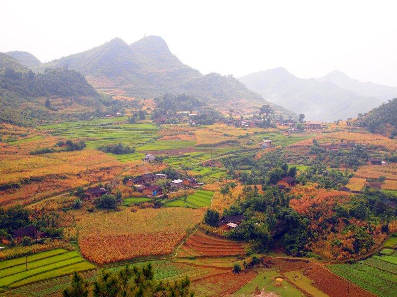 Remote, minority farming (taken with Pop Art setting)
