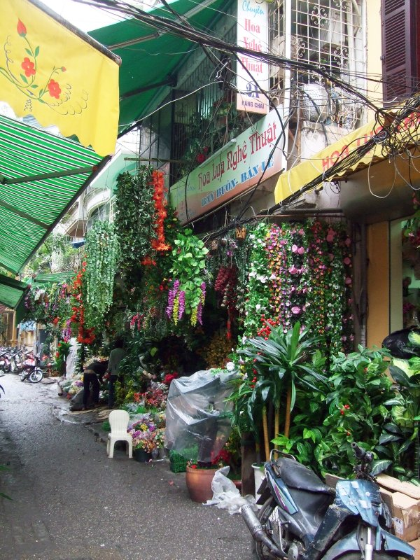 Old Quarter selling artificial plants and flowers