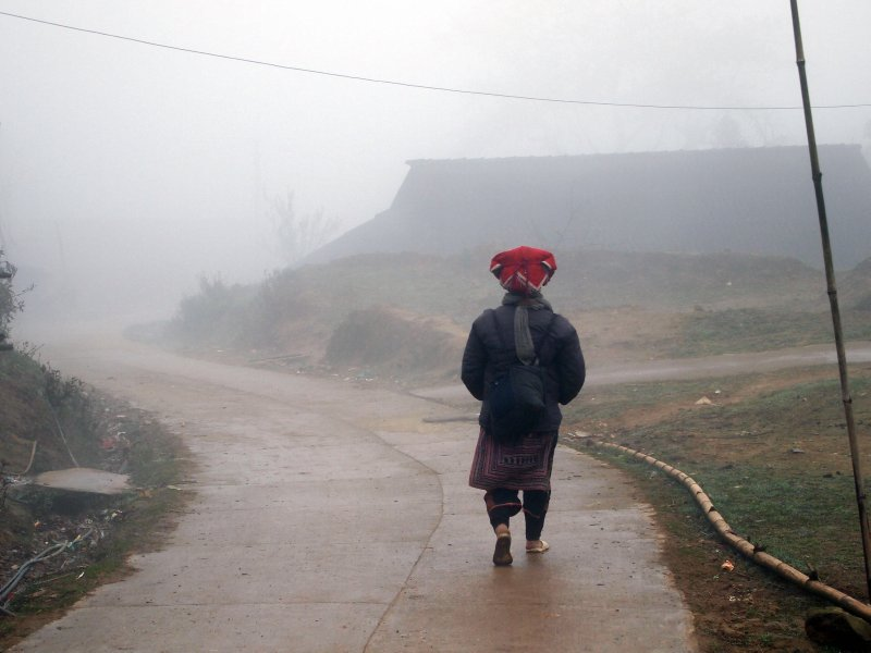 Dao girl in the low cloud, Sapa