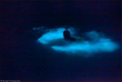 Bioluminescent-Bay-2.jpg