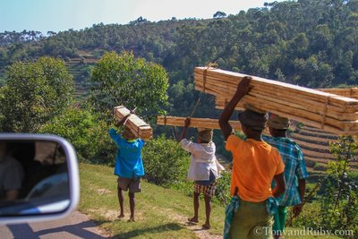 Locals Carrying Lumber