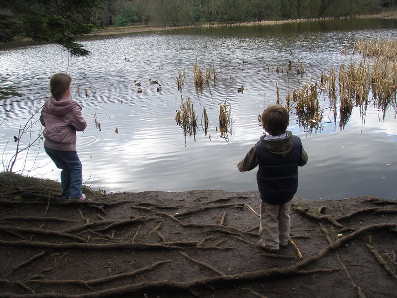 Feeding the ducks at Donadea Forest