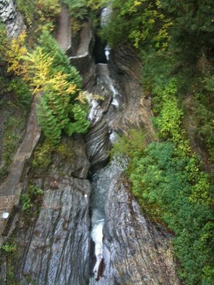 Watkins Glen gorge fall