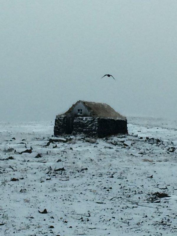 Sheep hut