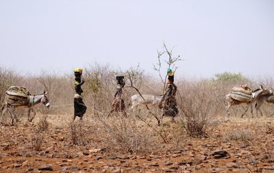 Turkana caravane