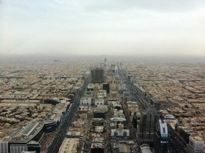 View over Riyadh from Prince Al Waleed's Kingdom Tower