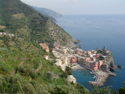 Hill over Vernazza