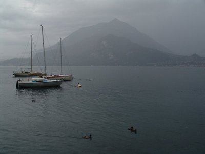 Duck weather on Lago di Como