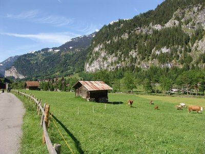 Lauterbrunnen Farm