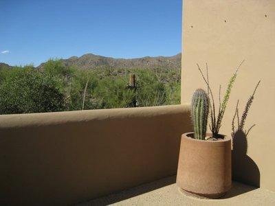 Arizona-Sonora Museum