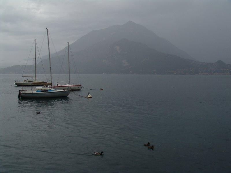 Duck weather on Lago di Como