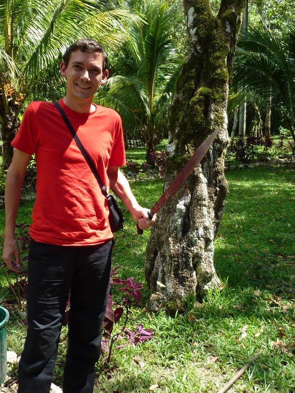Yann le guerilleros de la jungle