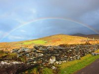 Irish Rainbow