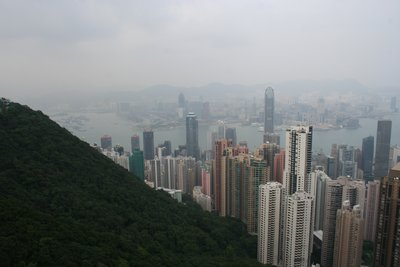 Hong Kong suburbs from the Peak