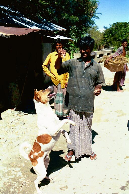 Kamal Plays with Raja, 1999