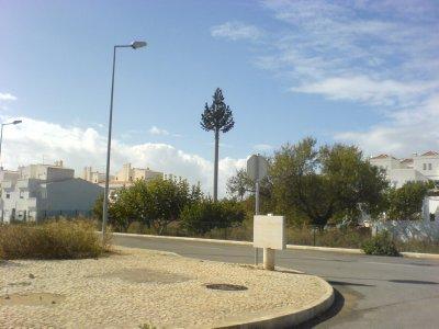 Cabanas_-_mobile_tree.jpg