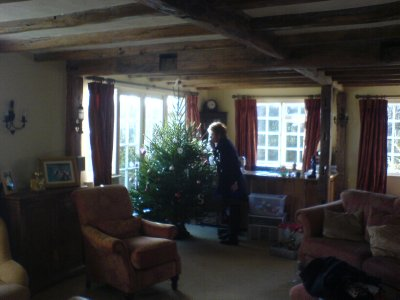 Little Waltham - Jeni helping with the christmas tree