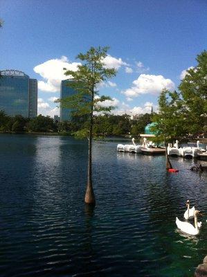 Orlando_-_Lake_Eola.jpg