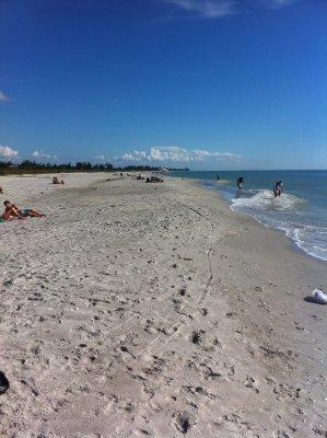 Sanibel_Is..an_s_Beach2.jpg