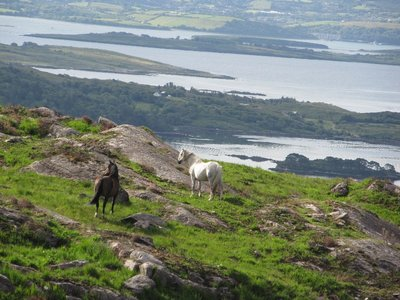 Views of the lakes and countryside along the Beara Peninsular, County Cork