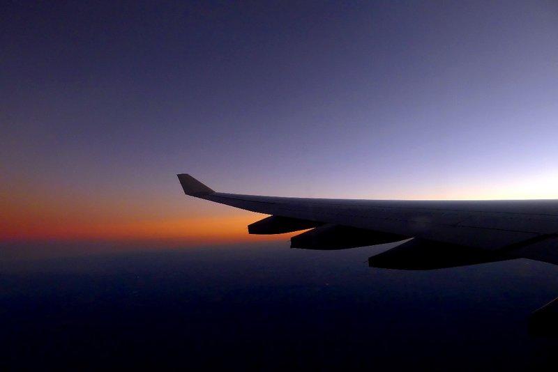 Wing1