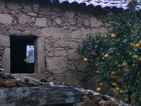 7This_is_sooo_Portugal.jpg