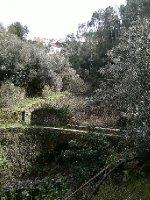 Alvaro_Roman_bridge_1.jpg