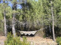 The hammock for lazy Sundays