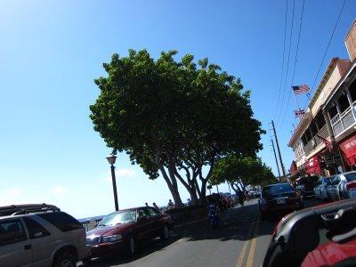 Cruising down Front Street, Lahaina
