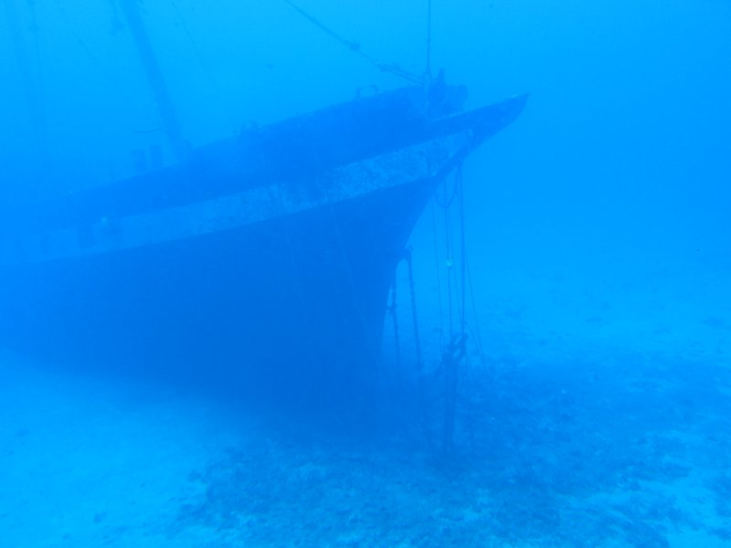 View of a sunken ship in the sub