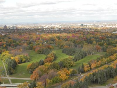 fall colours still on in montreal