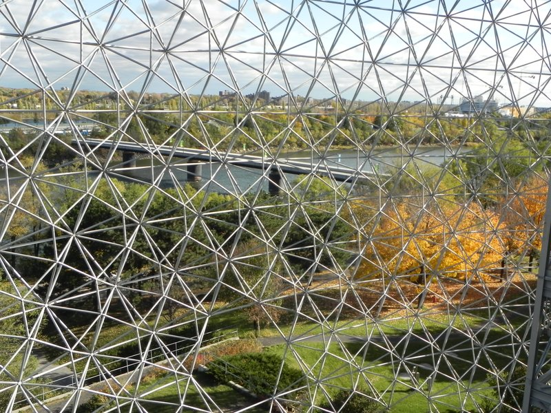 View from inside the Biosphere