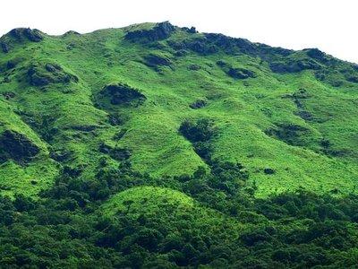 Brahmagiri.jpg